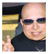 Picture of Verne Troyer